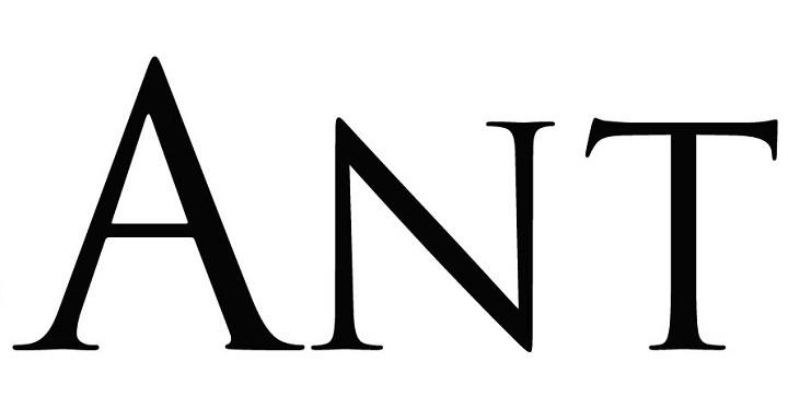 CasAntica-logo