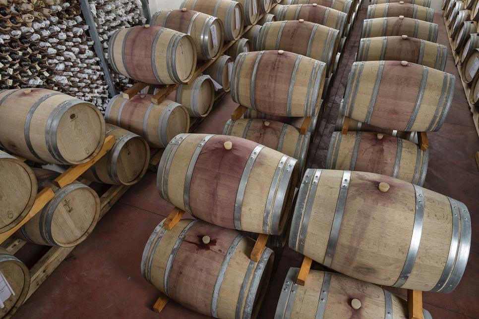 Barrels of wine in Marsala