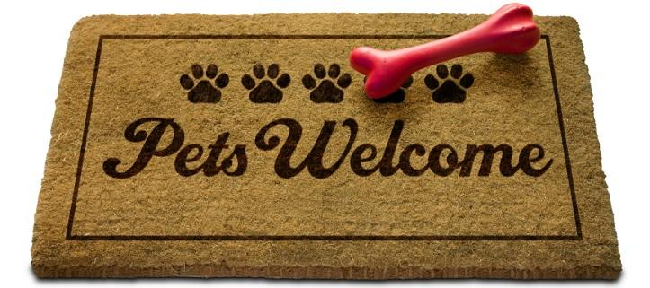 Pets welcome holiday homes in Sicily