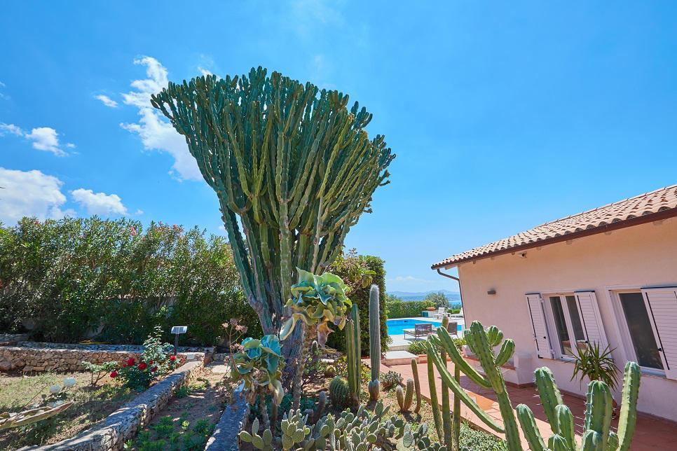 Villa Stella Terrasini 27428