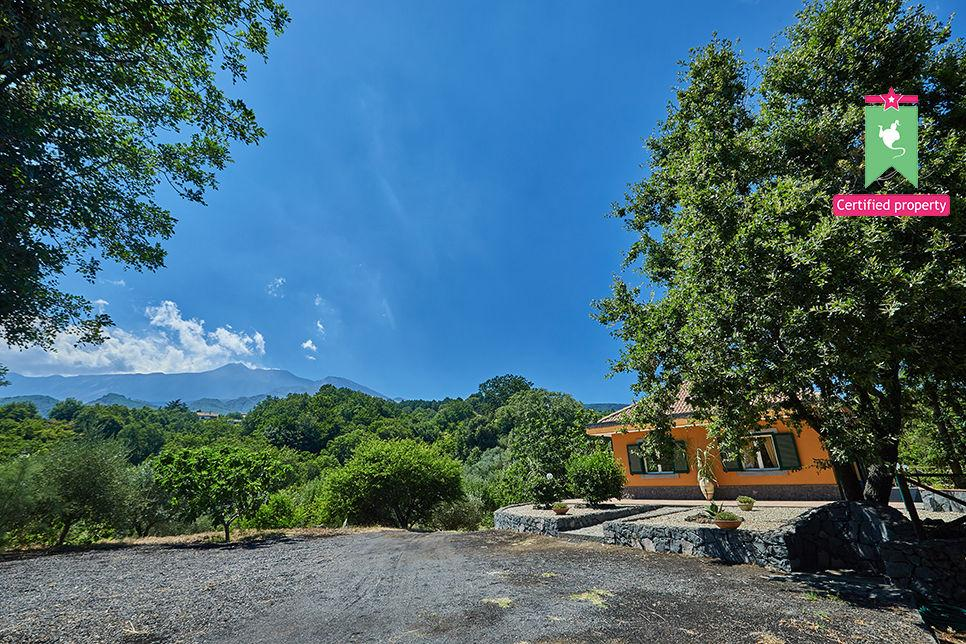 Villa Cocuzzolo Sant'Alfio 25996