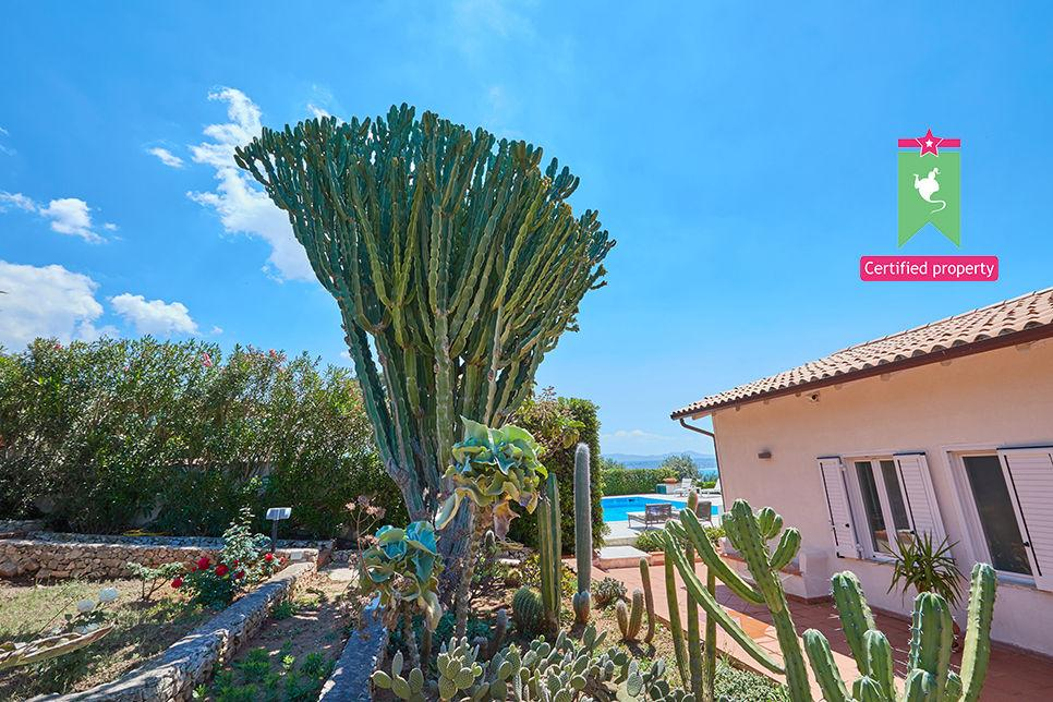 Villa Stella Terrasini 24901