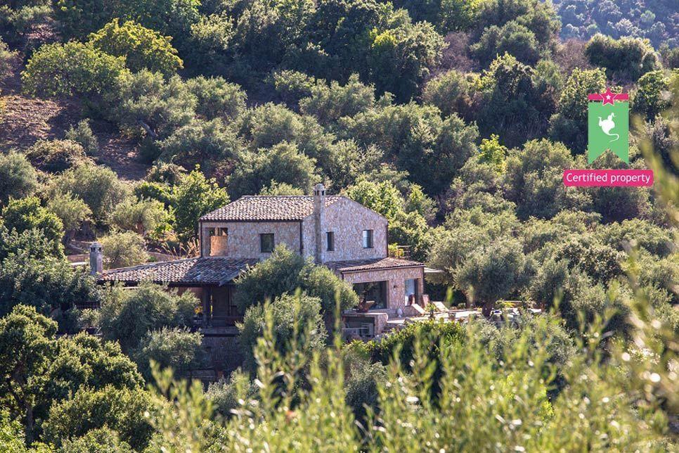 Villa Arte Mare Blue Cefalu 22261