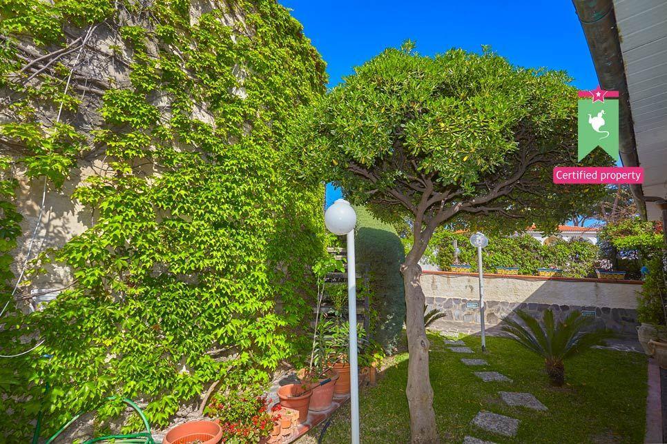 Villa Renata Fontane Bianche 23147